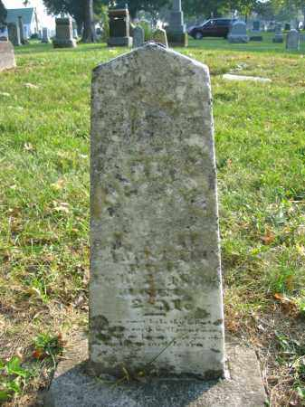 LANGSTAFF, CHARLES W. - Union County, Ohio | CHARLES W. LANGSTAFF - Ohio Gravestone Photos