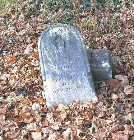LEONARD, MARTIN - Union County, Ohio | MARTIN LEONARD - Ohio Gravestone Photos