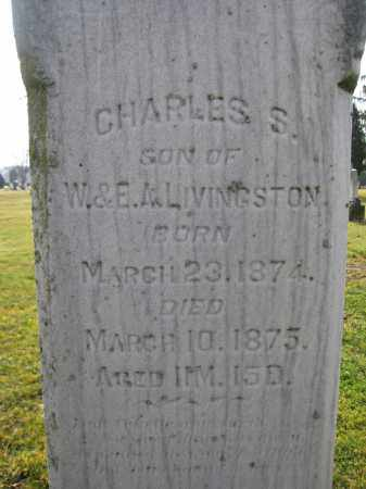 LIVINGSTON, CHARLES S. - Union County, Ohio | CHARLES S. LIVINGSTON - Ohio Gravestone Photos