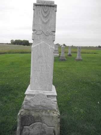 LIVINGSTON, JOHN C. - Union County, Ohio | JOHN C. LIVINGSTON - Ohio Gravestone Photos