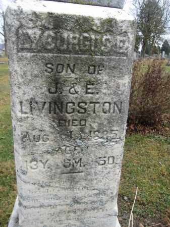 LIVINGSTON, LYCURGUS E. - Union County, Ohio | LYCURGUS E. LIVINGSTON - Ohio Gravestone Photos