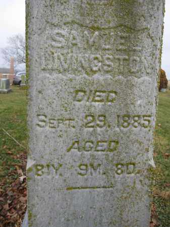 LIVINGSTON, SAMUEL - Union County, Ohio | SAMUEL LIVINGSTON - Ohio Gravestone Photos