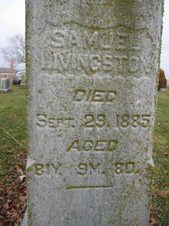 LIVINGSTON, SAMUEL - Union County, Ohio | SAMUEL LIVINGSTON - Ohio Gravestone Photos