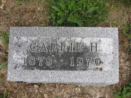 LONGBRAKE, CARRIE H. - Union County, Ohio | CARRIE H. LONGBRAKE - Ohio Gravestone Photos