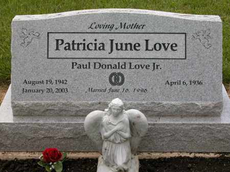LOVE, PAUL DONALD, JR. - Union County, Ohio | PAUL DONALD, JR. LOVE - Ohio Gravestone Photos