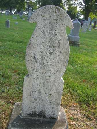 LYONS, SUSANNAH - Union County, Ohio | SUSANNAH LYONS - Ohio Gravestone Photos