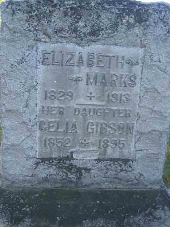 MARKS, ELIZABETH - Union County, Ohio | ELIZABETH MARKS - Ohio Gravestone Photos