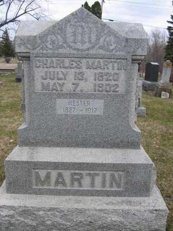 MARTIN, HESTER - Union County, Ohio | HESTER MARTIN - Ohio Gravestone Photos