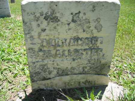 MCALLISTER, ALEXANDER - Union County, Ohio | ALEXANDER MCALLISTER - Ohio Gravestone Photos