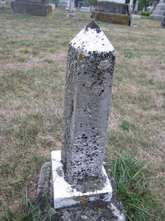 MCDOWELL, NANNE - Union County, Ohio | NANNE MCDOWELL - Ohio Gravestone Photos