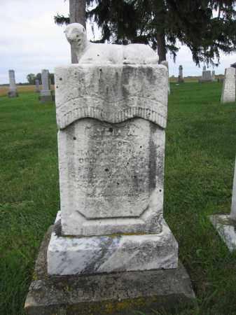 MCMILLIN, LYDIA - Union County, Ohio | LYDIA MCMILLIN - Ohio Gravestone Photos