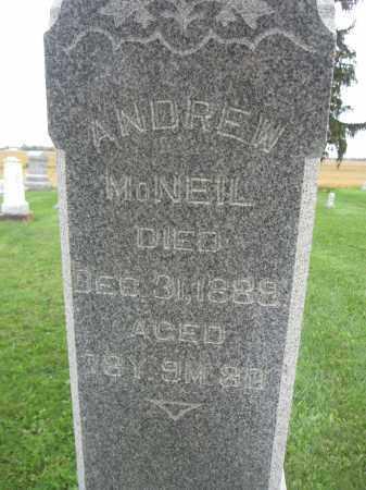 MCNEIL, ANDREW - Union County, Ohio | ANDREW MCNEIL - Ohio Gravestone Photos