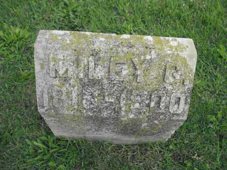 MEDDLES, MILEY G. - Union County, Ohio | MILEY G. MEDDLES - Ohio Gravestone Photos