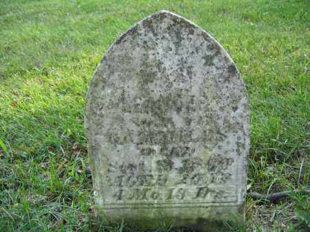 MILES, LEANDER - Union County, Ohio | LEANDER MILES - Ohio Gravestone Photos