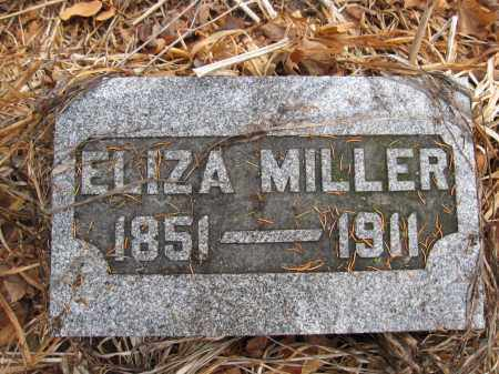 MILLER, ELIZA ANN LIVINGSTON - Union County, Ohio | ELIZA ANN LIVINGSTON MILLER - Ohio Gravestone Photos