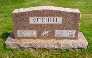 MITCHELL, CECIL LEHMAN - Union County, Ohio | CECIL LEHMAN MITCHELL - Ohio Gravestone Photos
