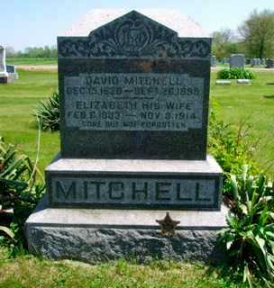 MITCHELL, DAVID - Union County, Ohio | DAVID MITCHELL - Ohio Gravestone Photos