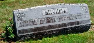 CALDWELL MITCHELL, HANNAH - Union County, Ohio | HANNAH CALDWELL MITCHELL - Ohio Gravestone Photos