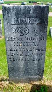 CHAPMAN MITCHELL, MARY - Union County, Ohio | MARY CHAPMAN MITCHELL - Ohio Gravestone Photos