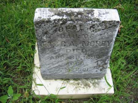 MOREY, OPAL G. - Union County, Ohio | OPAL G. MOREY - Ohio Gravestone Photos