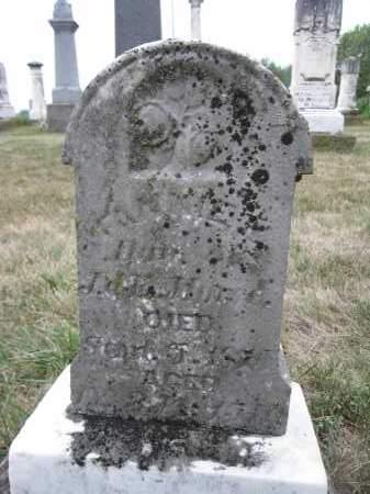 MORSE, FANNIE L. - Union County, Ohio | FANNIE L. MORSE - Ohio Gravestone Photos