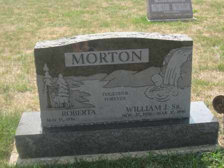 MORTON, WILLIAM J. - Union County, Ohio | WILLIAM J. MORTON - Ohio Gravestone Photos