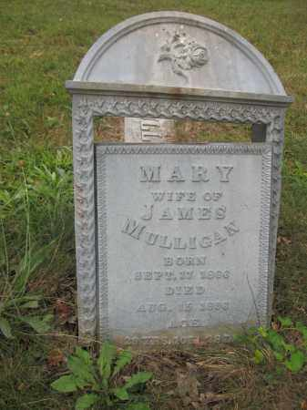 MULLIGAN, MARY - Union County, Ohio | MARY MULLIGAN - Ohio Gravestone Photos