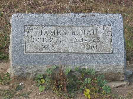 NAU, JAMES B. - Union County, Ohio | JAMES B. NAU - Ohio Gravestone Photos