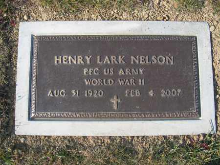 NELSON, HENRY LARK - Union County, Ohio | HENRY LARK NELSON - Ohio Gravestone Photos