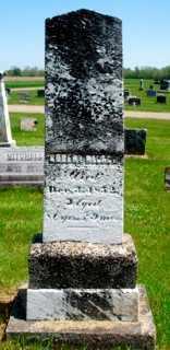 NELSON, JUDGE ROBERT - Union County, Ohio   JUDGE ROBERT NELSON - Ohio Gravestone Photos