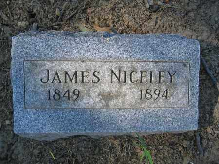 NICELEY, JAMES - Union County, Ohio   JAMES NICELEY - Ohio Gravestone Photos