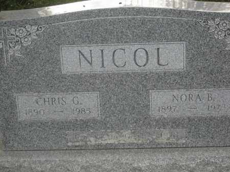 NICOL, INFANT DAUGHTER - Union County, Ohio | INFANT DAUGHTER NICOL - Ohio Gravestone Photos