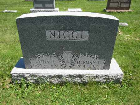 NICOL, LYDIA A. - Union County, Ohio | LYDIA A. NICOL - Ohio Gravestone Photos