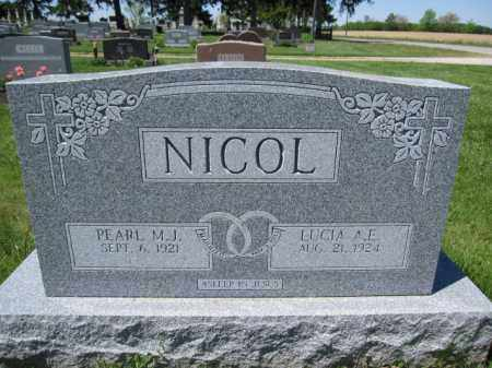 NICOL, LUCIA A.E. - Union County, Ohio | LUCIA A.E. NICOL - Ohio Gravestone Photos