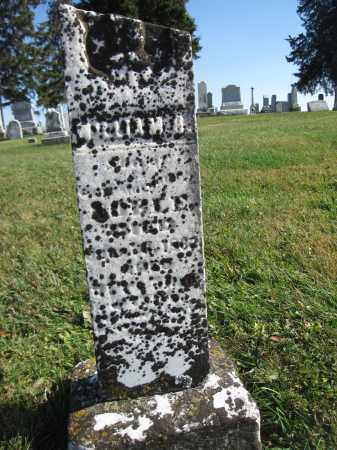 NOBLE, WILLIAM H. - Union County, Ohio | WILLIAM H. NOBLE - Ohio Gravestone Photos