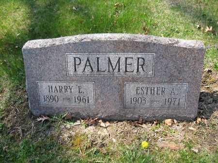PALMER, ESTHER A. SCHEIDERER - Union County, Ohio | ESTHER A. SCHEIDERER PALMER - Ohio Gravestone Photos