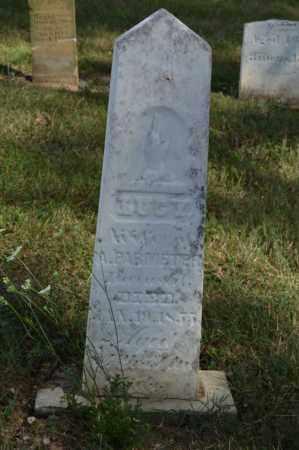 PARMETER, LUCY - Union County, Ohio | LUCY PARMETER - Ohio Gravestone Photos