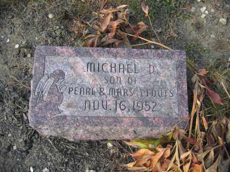 PFOUTS, MICHAEL D. - Union County, Ohio | MICHAEL D. PFOUTS - Ohio Gravestone Photos