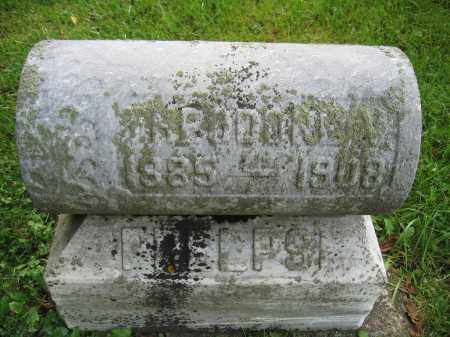 PHELPS, THEODORE V. - Union County, Ohio | THEODORE V. PHELPS - Ohio Gravestone Photos