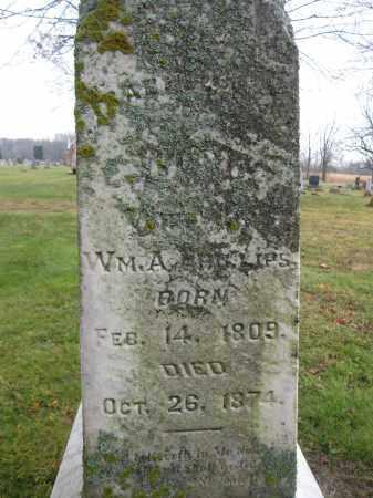 PHILLIPS, SABELA WOOD - Union County, Ohio | SABELA WOOD PHILLIPS - Ohio Gravestone Photos