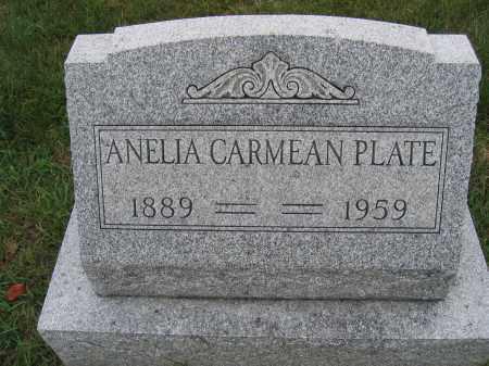PLATE, ANELIA CARMEAN - Union County, Ohio | ANELIA CARMEAN PLATE - Ohio Gravestone Photos