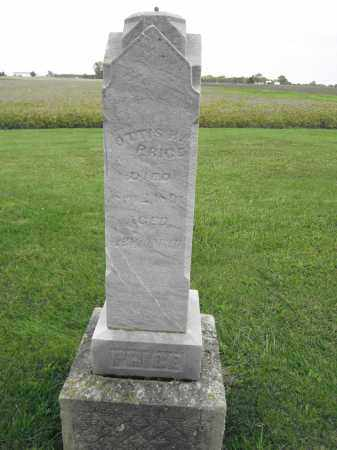 PRICE, OTIS H. - Union County, Ohio | OTIS H. PRICE - Ohio Gravestone Photos