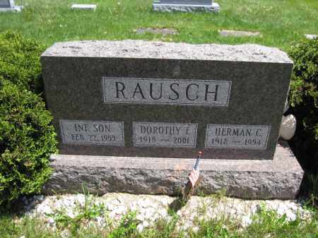 RAUSCH, HERMAN C. - Union County, Ohio | HERMAN C. RAUSCH - Ohio Gravestone Photos