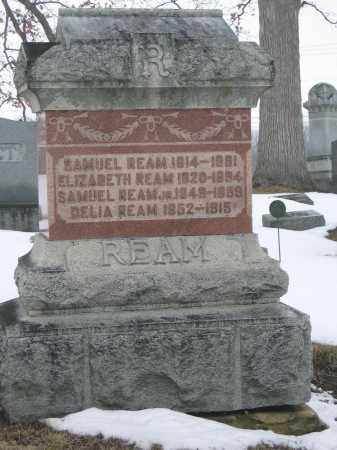 REAM, DELIA - Union County, Ohio | DELIA REAM - Ohio Gravestone Photos