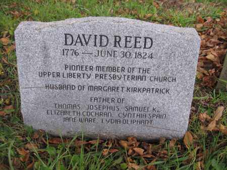 REED, DAVID - Union County, Ohio | DAVID REED - Ohio Gravestone Photos