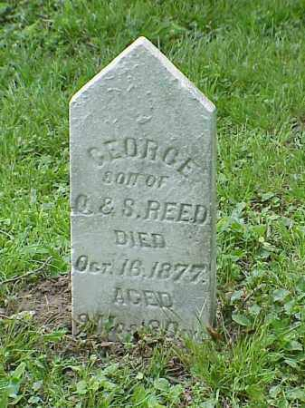 REED, GEORGE - Union County, Ohio | GEORGE REED - Ohio Gravestone Photos