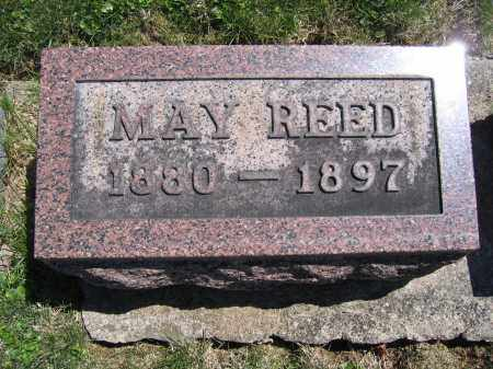 REED, MARY - Union County, Ohio | MARY REED - Ohio Gravestone Photos
