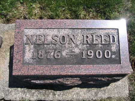 REED, NELSON - Union County, Ohio | NELSON REED - Ohio Gravestone Photos