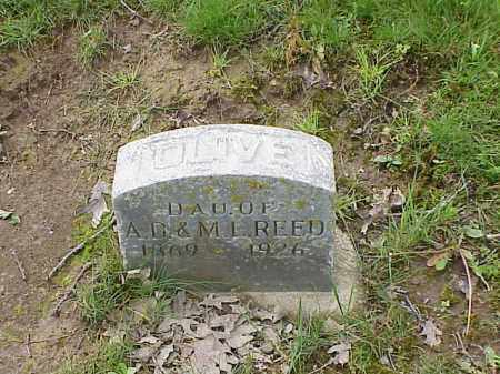 REED, OLIVE - Union County, Ohio | OLIVE REED - Ohio Gravestone Photos