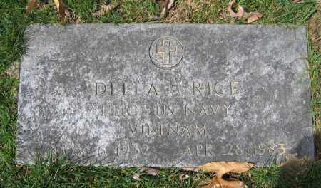 RICE, DELA J. - Union County, Ohio | DELA J. RICE - Ohio Gravestone Photos